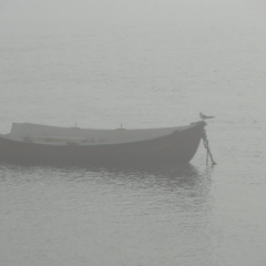 Misty Santander