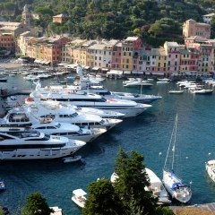 Portofino Harbour...and the Wildbeast