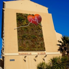 Wall Plants in Marseille